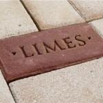 Speciale straatstenen markeren Limes-route