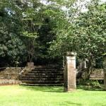'Zet Jodensavanne (Suriname) op Wereld erfgoedlijst'