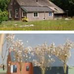 Weg vrij voor bouw 'koloniehuizen' Frederiksoord