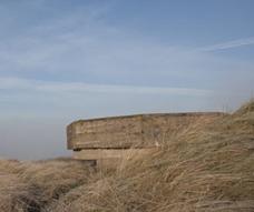 Vleermuisbunker Hollands Duin. Foto via Staatsbosbeheer.nl
