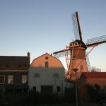 Zuid-Hollandse subsidie restauratie molens blijft behouden
