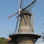 Alle molens in Hoeksche Waard open op 20 oktober