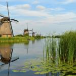 Oer-Hollands plaatje bekroond bij grootste fotowedstrijd ter wereld