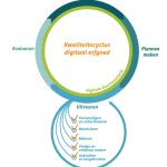 Kwaliteitscyclus Digitaal Erfgoed in een nieuw jasje