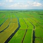 Provincie Utrecht stelt nieuwe doelen voor landelijk gebied vast