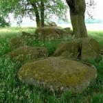 Bijzondere archeologische vondst bij Zuidlaren
