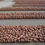 Duitse werklozen restaureren stenen Westerbork