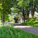 Groningse Oldambt wint landschapsprijs Juichwilg