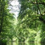 Utrechts college stemt in met inrichting Park Randenbroek