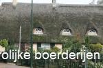 De vrolijke boerderijen van Den Dungen (Video)