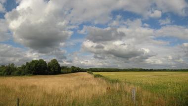 Drents landschap. Foto: Wutsje via wikipedia