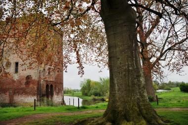 Ruïne Nijenbeek nabij Voorst. Foto: Koosg