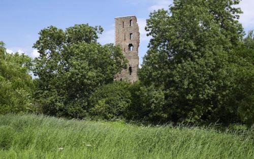 Slotbosse toren (Ruïne Huis Rijen) foto: RCE