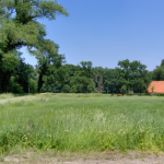 Steekproef: 20% landschapselementen bedreigd