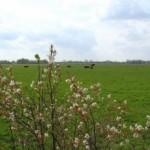 De Wolden investeert 1,1 Miljoen euro in verbetering landschap