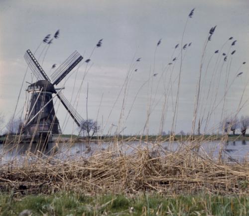Garstermolen Nigtevegt (1960) Foto: RCE