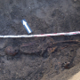 Kom meekijken bij onderzoek naar Haarlemse skeletten