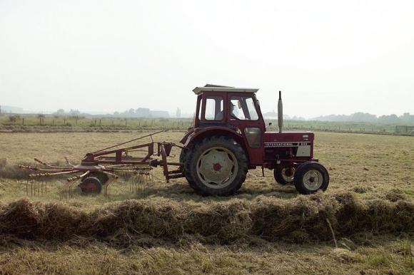 Landbouw langs de Rijn bij Spijk
