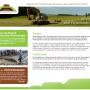 Nieuwe website Vereniging voor Terpenonderzoek