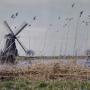 900 molens open op Nationale Molendag 2013