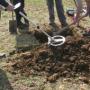 Vondst prehistorische bronzen ring in Rouveen