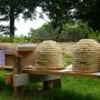 IKL reconstrueert Middeleeuwse Bijenschans Reuver