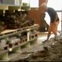 Archeologische vondsten waddenzee vaak weggegooid (video)