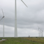 Haarlemmermeer naar Raad van State om windmolenverbod