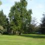 Monumentale bomen Haarlem krijgen een chip