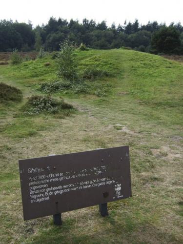 Grafheuvels bij Ermelo uit het Neoliticum-IJzertijd. Dit is niet de grafheuvel van Elst. Foto: Bert van As (Rijksdienst voor het Cultureel Erfgoed