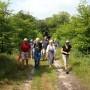 Opening cultuurhistorische wandeling Plantage Willem III en Kwintelooijen