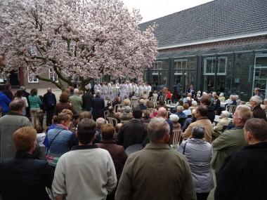Schitterende entourage onder de Magnolia