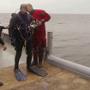 Bescherming-onder-water van een Texels wrak (Video)
