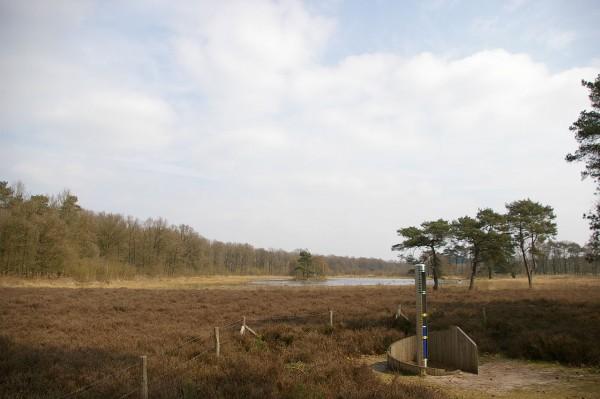 Utrechtse Heuvelrug Foto: MartinD via wikimedia
