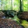 Provinciale bijdrage voor een aantrekkelijk Waterloopbos