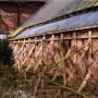 Loppersum wil monumentale panden beschermen tegen versterkingsmaatregelen