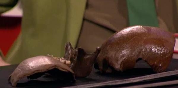 Gevonden schedels van de veldslag van Caesar, Kessel Foto via dwdd.nl