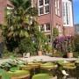 Duurzaam Erfgoedprijs voor Hermitage en Hortus Botanicus