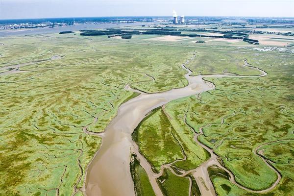 Het Verdronken Land van Saeftinghe Foto: Joop van Houdt/ RWS