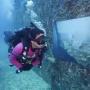 Scheepswrak verandert in onderzees museum
