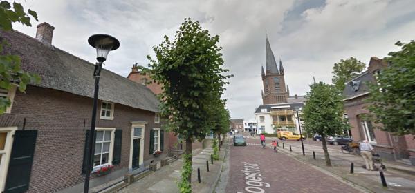 Hogestraat, Druten Foto: Google Maps