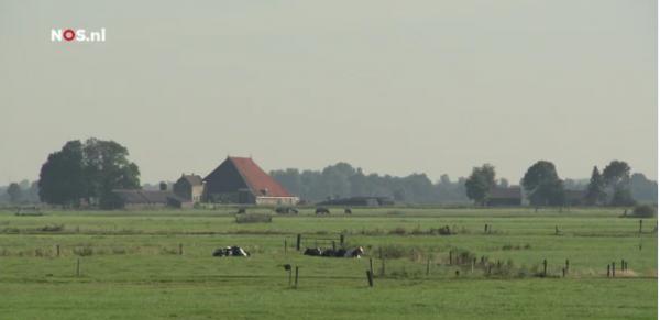 Fries landschap Beeld: NOS
