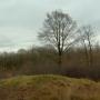 Historische Vereniging maakt grafheuvel Oude Willem weer toonbaar