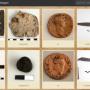 Online expositie van archeologische vondsten uit Alphen
