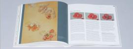 Het Schilderboek: Geheimen van de oude meesters onthuld en beschreven