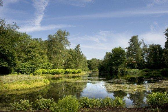 Het J.P. Thijssepark in Amstelveen was vorig jaar een van de monumenten die instandhoudingssubsidie ontving