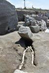 De resten van een ongelukkige man in Pompeï
