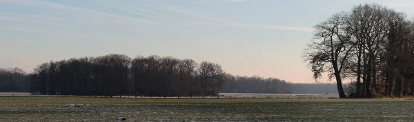 Coulissenlandschap in Twente