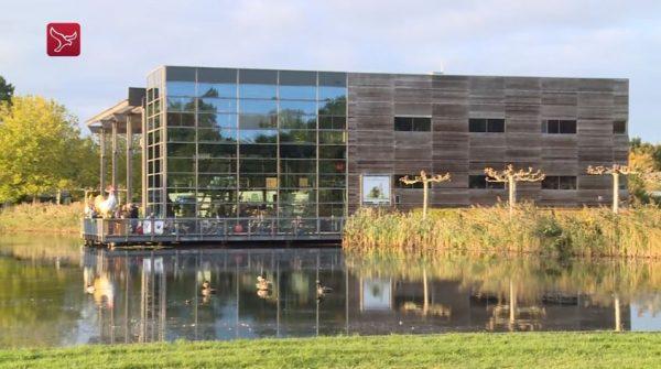 De Kemphaan in Almere