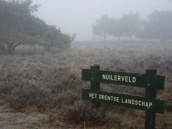Het Nuilerveld bij Pesse
